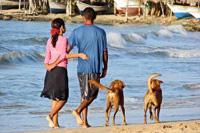 Urlaub mit Hund Spanien